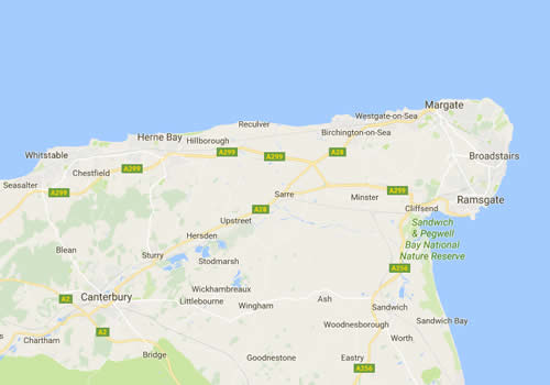 Pest and vermin control in Thanet, from Margate, Ramsgate and Broadstairs to Canterbury, Dover, Herne Bay and Whitstable